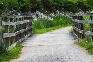 virtual tours of the Montour Trail